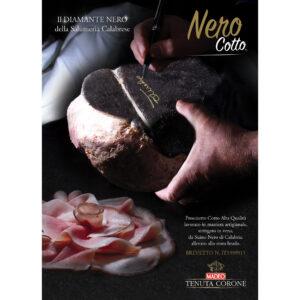 maiale nero di Calabria